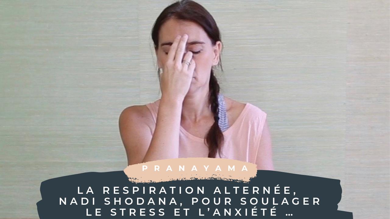 La Respiration Alternee Nadi Shodana Pour Soulager Le Stress Et L Anxiete Yamyoga
